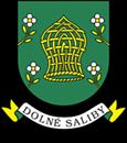Dolné Saliby - Alsószeli